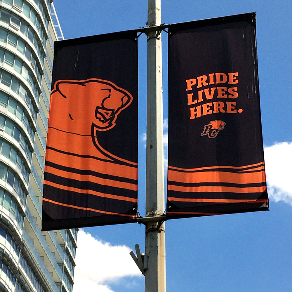 BCLions_Banners_1