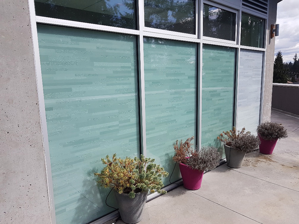 2017 Digby Leigh Window Graphics