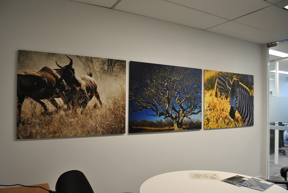 2017 Knight Piesold Wall Graphics