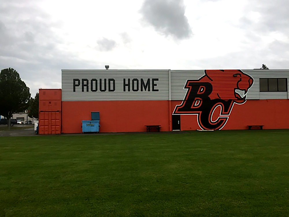 BC Lions Wall Mural 2015